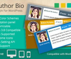 author bio in WordPress posts