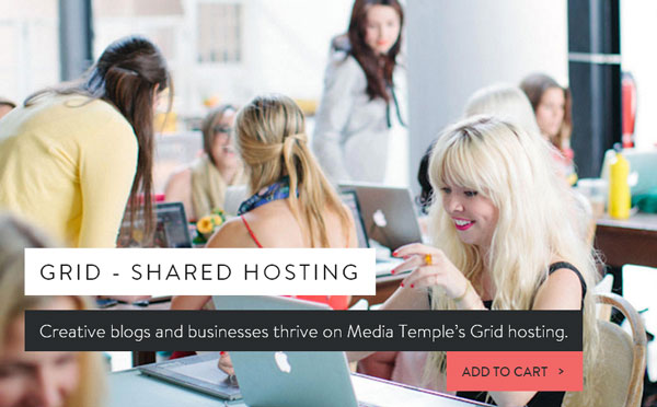 media-temple-hosting