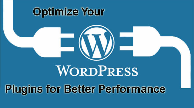 optimize WordPress plugins