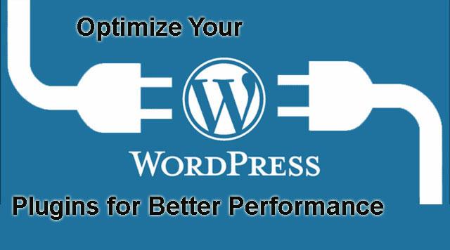 optimize WordPress plugins